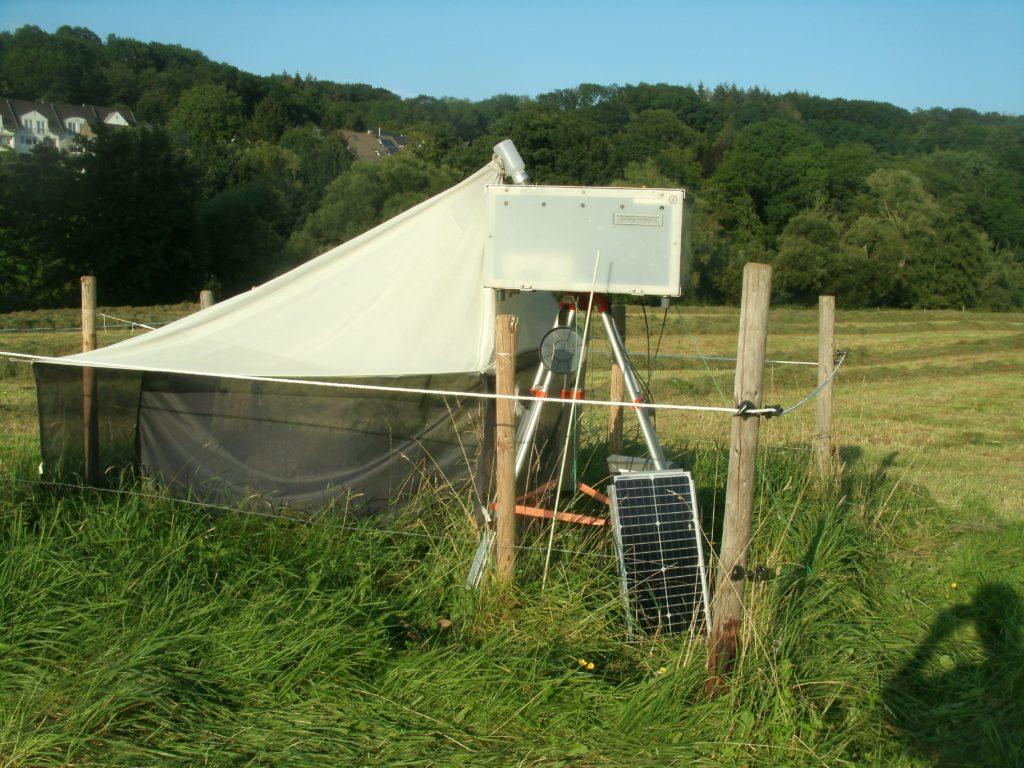 Ein Blick auf die Kulissen: Hier in einem der mehreren Zelte versammeln sich die Insekten ...; Bild Umw. u. Energ.-Rep.